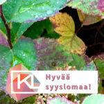 Kuva ruskan värittämistä pensaan lehdistä ja kuvassa lukee hyvää syyslomaa Kuvataidekoulujen liiton logon yhteydessä.